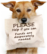 Please help. Funds are desperately needed