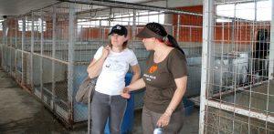 Michelle visiting Animal Rescue Sofia in Bulgaria